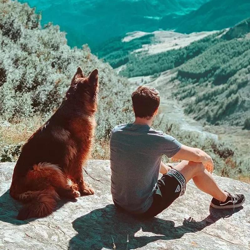 Собака и друг